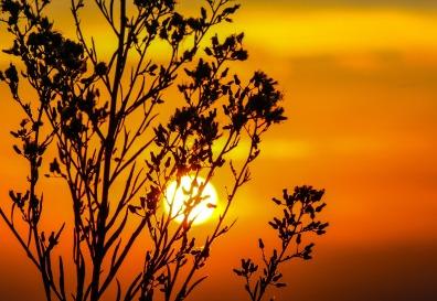 sunset-203188_1920